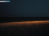 cotuit_nighttime